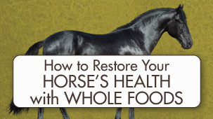 Whole Food for Horses: Restoring your Horse's Health with Whole Foods and BioStar