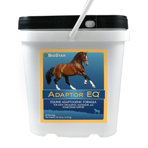 Adaptor EQ for equine wellness through homeostasis | BioStar US