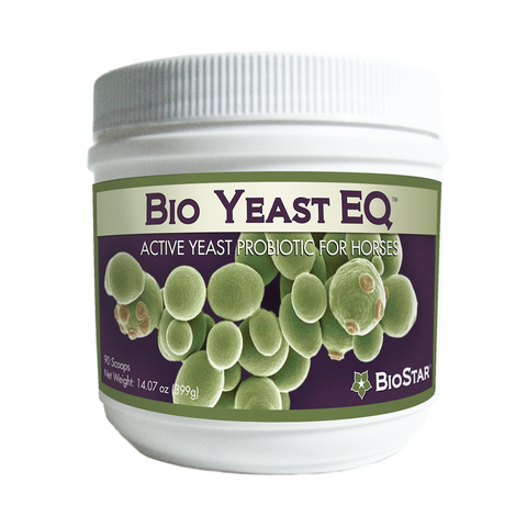 BioYeast EQ active yeast probiotic for horses by BioStar US