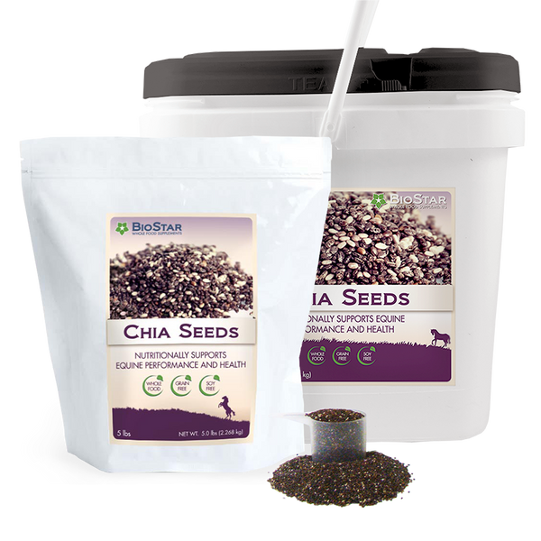 Omega-3 Rich Chia Seeds from BioStar US