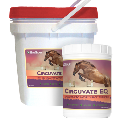 Circuvate EQ by BioStar US, an advanced formula for equine circulation support