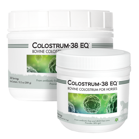 Colostrum-38 EQ for equine immune support by BioStar US