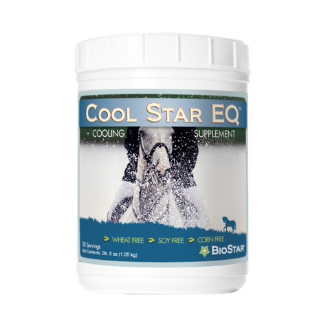 Cool Star EQ for cooling and hydration | BioStar US