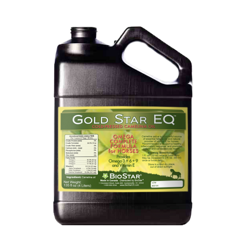Gold Star EQ Cold-Pressed Camelina Oil for Horses | BioStar US