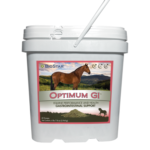 Optimum GI