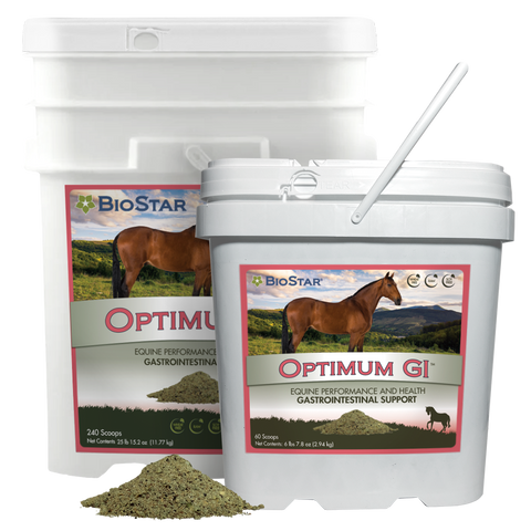 Optimum GI Multivitamin and Mineral with GI Support | BioStar US