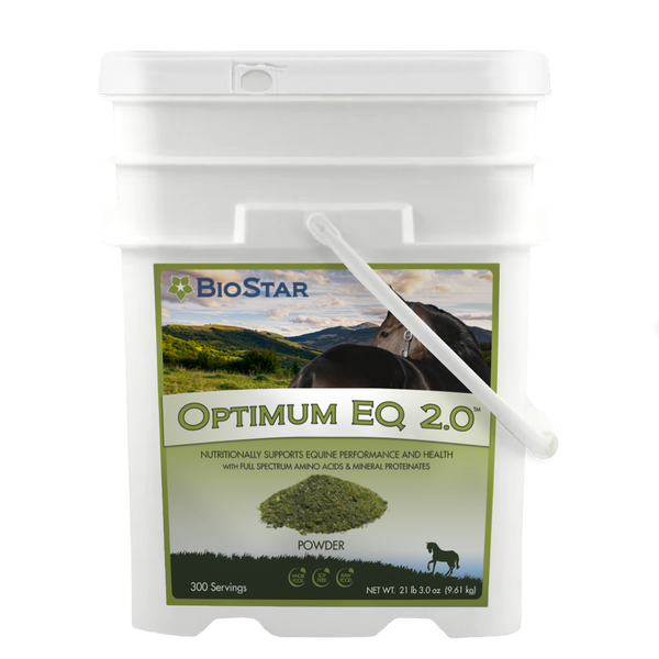 Optimum 2.0 Equine Wellness formula | BioStar US