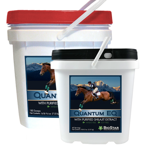 Quantum EQ - Bulk 180 scoops - by BioStar US