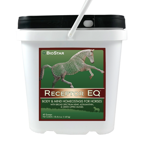 Receptor EQ for equine homeostasis | BioStar US