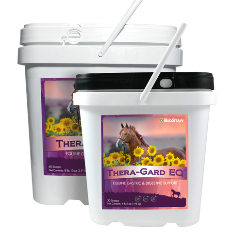 Thera-Gard EQ Gastric & Digestive Support for Horses | BioStar US