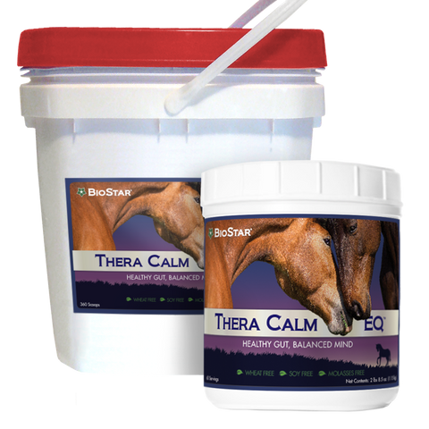 Thera Calm EQ Calming for Horses | BioStar US