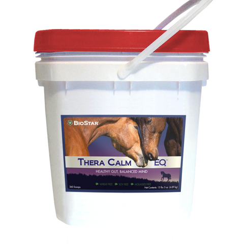 Thera Calm EQ