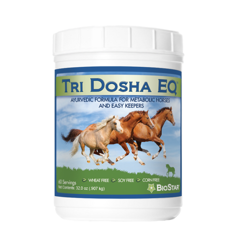 Tri Dosha EQ for Metabolic Horses and Easy Keepers | BioStar US