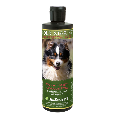 Gold Star K9 - cold pressed camelina oil for dogs, from BioStar US