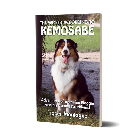 The World According to Kemosabe by Tigger Montague | BioStar US