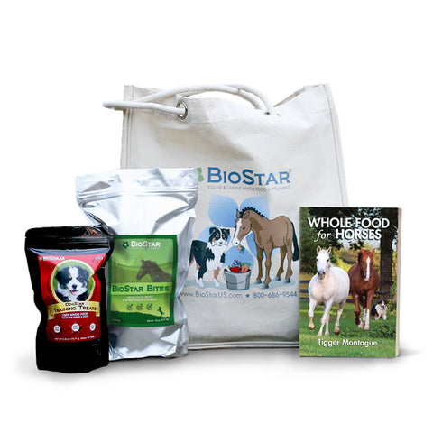 Totes: BioStar Gift Bags