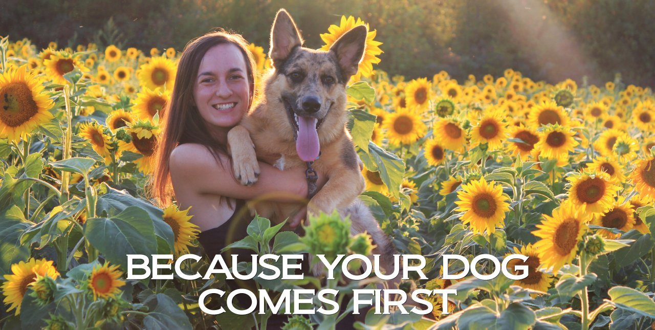 Canine Health: Real food, real dogs | BioStar US