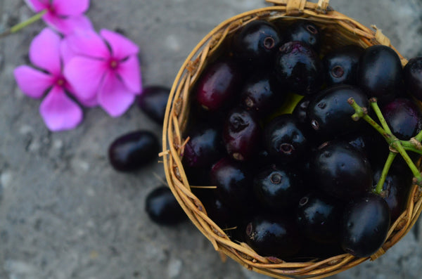 jamuns in india