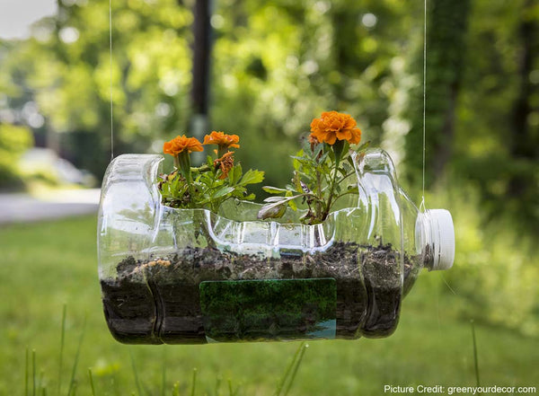 Reusing empty water bottles as planters