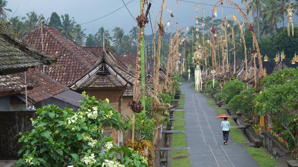 Penglipuran village and bamboo forest Bali - Routive.com