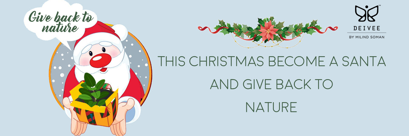 Become A Santa & Give Back To Nature This Christmas