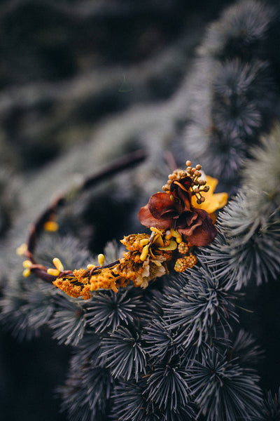 Autumn flower headband Wedding accessories Bridal hair accessories Autumn style Woodland style Handmade product