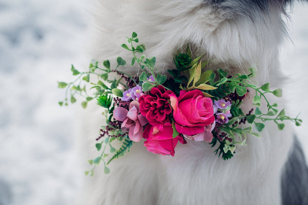 Floral dog collar Flower collar for dogs Collar for pets Flower accessories for pets Wedding accessories Wedding collar for dog