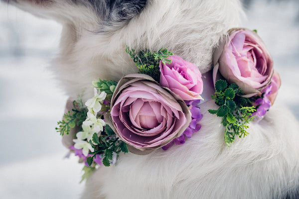 Pink floral dog collar with a bow Collar for dogs Collar for pets Flower accessories for pets Wedding accessories Wedding collar for dog