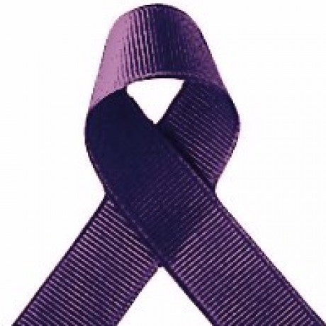 ribbon - 9mm grosgrain ribbon - Purple - Fabridasher