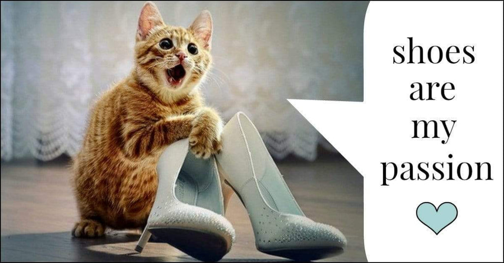11 Amazing Ways That Shoes And Cats Are Connected