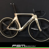 FSM PISTA Gold version