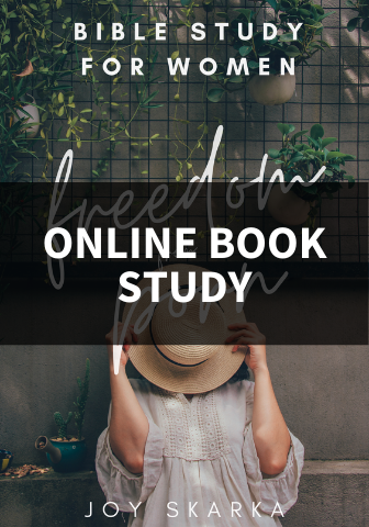 Women Struggling with Pornography Online Book Study Group--Friday