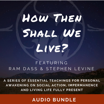 How Then Shall We Live? (Audio Download)