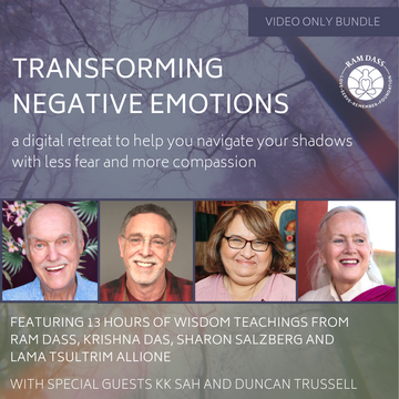 Transforming Negative Emotions Virtual Retreat [video bundle]