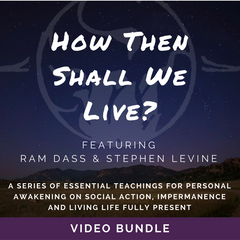 """How Then Shall We Live?"" Video Download Bundle"