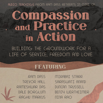 Compassion and Practice in Action (Audio Download)