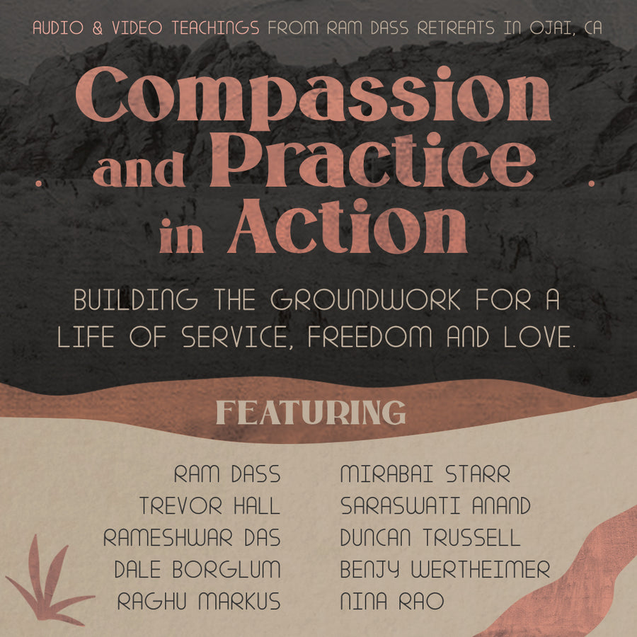 Compassion and Practice in Action (Audio & Video Download)