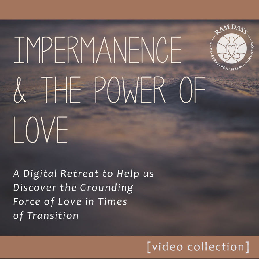 'Impermanence and the Power of Love' Video Collection