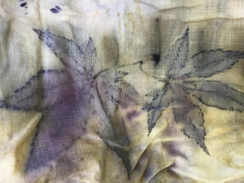 Make a Unique & Gorgeous Botanically Dyed Silk Scarf - Sunday, Aug 18