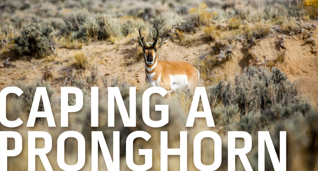 AVOID COSTLY MISTAKES THIS ANTELOPE SEASON