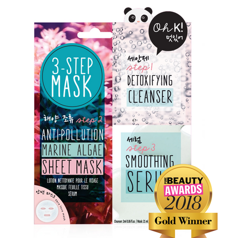 3 Step Anti-Pollution Mask