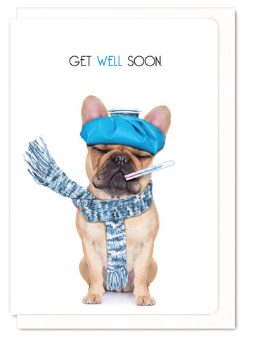 Get Well Soon Frenchie