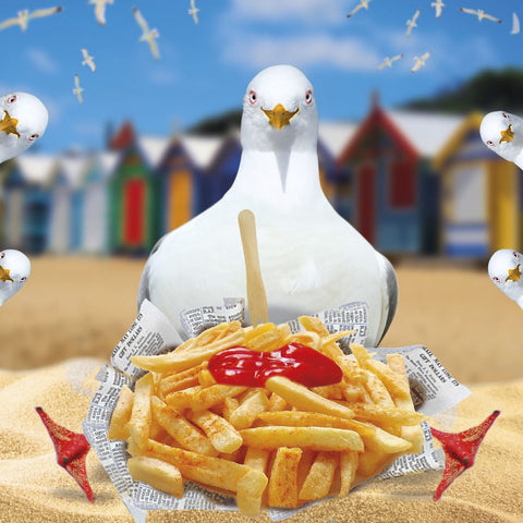 Seagull & Chips