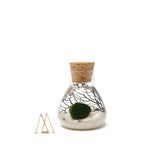 Marimo Scientific