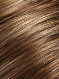 Color 10H16 = Latte: Light Brown w/ 20% Ash Blonde Highlights