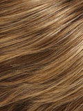 Color 24BT18 = Eclair: Dk Ash Brown & Honey Blonde Blend, w/ Honey Blonde Tips