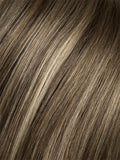 Color Dark-Sand-Mix = Light Brown base with Lightest Ash Brown and Medium Honey Blonde blend