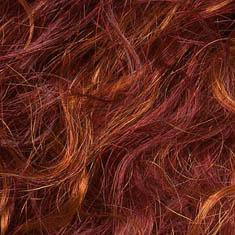 FLAME-LIGHTED | Bright Burgundy Red base with Bright Strawberry Blonde highlights on the top only, darker nape