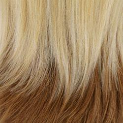 GM613/27 Gradual Mix OMBRE Color. Platinum Blonde (#613)Top, Honey Blonde (#27) Bottom