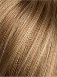 Color Hot-Ginger-Mix = Light Honey Blonde, Light to Medium Auburn, and Medium Warm Honey Blonde blend
